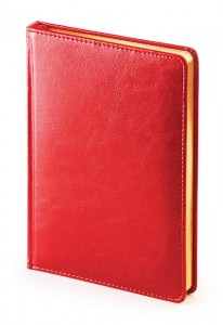 Ежедневник недатированный А5 (красный)